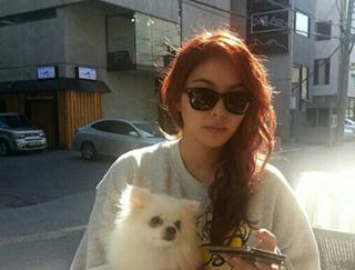 韩国女歌手 - 李艺真(Ailee)太阳镜 SAGAWAFUJII眼镜
